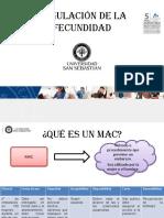 MAC general.pdf