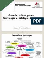 1.-Características-gerais-Morfologia-e-Citologia-dos-Fungos-Medicina-Microbiologia-II-converted.pptx