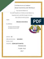 Órganos Endocrinos - Informe de Histología FMUNT