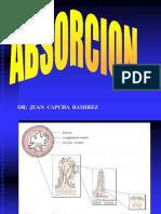 1.3.0-Fisiologia de La Absorción