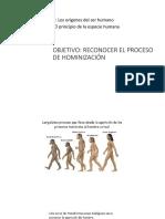 7 hominidos