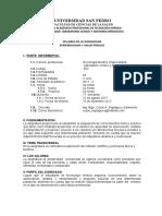 SYLLABUS EPIDEMIOLOGIA Y S PUBLICA 2017-II USP TEC MEDICA.docx