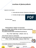 Lecture_5 Light Reaction (1)