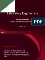 Ergonomics-2018-CAMLT-FINAL.pdf