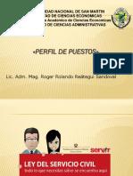 TEMA 5. PERFIL DE PUESTOS-.pptx