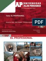 3.- El Profesional