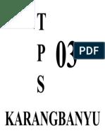 TPS.docx