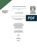 Reporte LEM II. Medidores de Flujo Listo