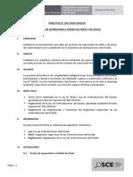 Directiva 010-2019 Supervisión