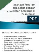 Sistematika Laporan Puskesmas Pis Pk