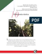 hidroponia rustica
