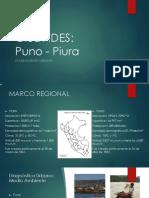 PIURA PUNO GESTION.pptx