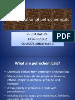 Biodegradation of Petrochemicals