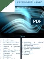 Bioremediation of Hydrocarbon