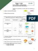 Ftrabalho_estudo Individual_DNA e RNA