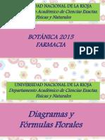 Diagramas y Formulas Florales 2015