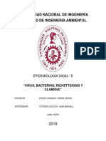 Virus, Bacterias, Rickettsiosis y Clamidia