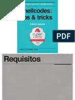 Shellcodes.pdf