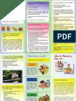 Triptico Alimentarse mejor.pdf