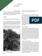 Syzygiumjambos.pdf
