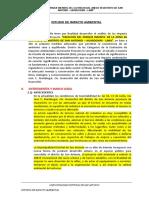 Estudio de Impacto Ambiental - San Antonio Huarochiri