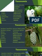TAXOMIA DE PLANTAS