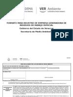 Formato Registro de Generardor de Rme