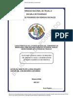 Tesis MaestríaX - Iván Felipe La Riva Vegazzo.pdf