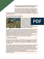 Procesos Productivos en Los Cuales El Ser Humano Afecta Los Ecosistemas
