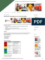 Alarmas Acústicas y Visuales_ Señalización de Emergencia en Los Centros de Trabajo