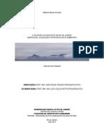 Monica_Bahia_Schlee_Tese_Doutorado_2011.pdf