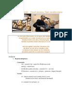 Romanian analysis.docx