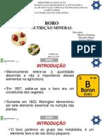 Nutrição mineral de plantas - Boro.pptx