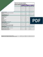 matriz de capacidad interna (1).pdf