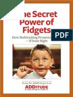 10251 for Parents the Secret Power of Fidgets