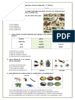 Prueba Diagnóstico - Ciencias Naturales - 3° Básico.doc