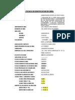 Ficha Tecnica de Obra- Primera Valorizacion- Mayo