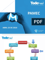 PAMEC ABRIL 23 DE 2019.ppt