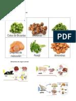 Alimentos de Origen animal, Vegetal y Mineral.docx