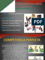 Diapo de Competencia Perfecta V