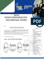 PROCESO DE CONTRATACIONES DEL ESTADO.pdf