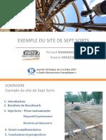 07---Richard-Manirakiza-et-Roxana-Vasilescu---Site-de-Sept-Sorts.pdf
