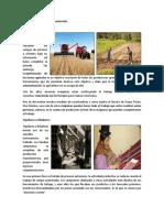 Avances tecnológicos de Guatemala.docx