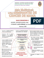 Mod multinivel CANCER DE MAMA