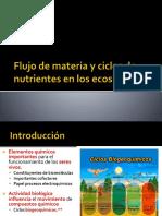 Ciclos de Nutrientes