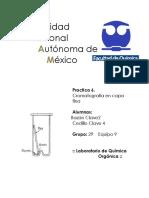 89726154-practica-6-de-Organica-Cromatrografia-en-capa-fina.docx