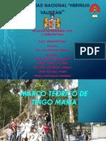 329778637-Marco-Teorico-de-Vivienda-Urbana-Tingo-Maria.pptx