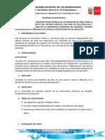 TDR Del Personal Tecnico Administrativo-chanquil Del Proyecto Trabaja Peru