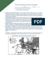 TALLERES DE SOCIALES 9º.docx