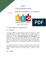 Contenido SIG - copia.docx
